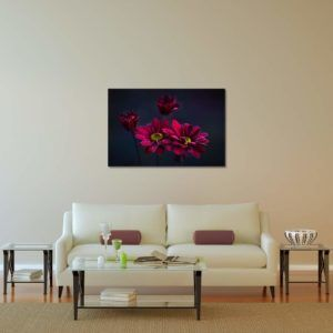 Petals with Morning Dew - Limited Edition Artwork by Minhajul Haque. A Photography Print Made with Love and Passion to Make You Feel Special and Serene. Here in This Image, It Is an Interior Scene with the Wall Art Print. Buy Limited Edition Pigment Prints of Artistic Nature and Landscape Photos for Your Home and Office Interiors. Bedroom Wall Art, Dining Room Wall Art, Living Room Wall Art, Kitchen Wall Art, Bathroom Wall Art, Kid's Room Wall Art, Office Wall Art, and Sitting Room Wall Art for Sale Online in India