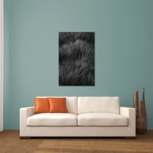 Waving Grasses - Limited Edition Artwork by Minhajul Haque. A Photography Print Made with Love and Passion to Make You Feel Special and Serene. Here in This Image, It Is an Interior Scene with the Wall Art Print. Buy Limited Edition Pigment Prints of Artistic Nature and Landscape Photos for Your Home and Office Interiors. Bedroom Wall Art, Dining Room Wall Art, Living Room Wall Art, Kitchen Wall Art, Bathroom Wall Art, Kid's Room Wall Art, Office Wall Art, and Sitting Room Wall Art for Sale Online in India