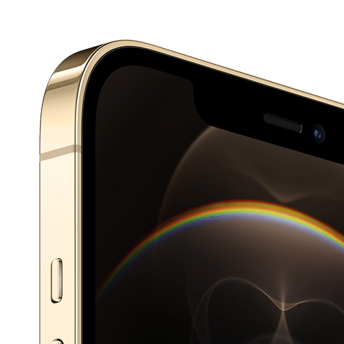 Apple iPhone 12 Pro Max Frontalansicht gold big
