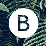 Barellani Logo