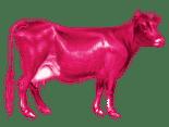 Holy Cow! Creative Logo
