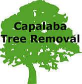 Capalaba Tree Removal Logo