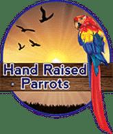 Hand Raised Parrots Logo
