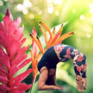 My Yoga Elixir  - Top Rated Yoga Studios in Brighton East VIC