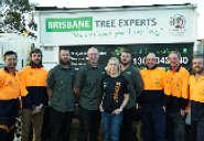 Brisbane Tree Experts - Best Home Services in Brisbane City, Queensland Australia