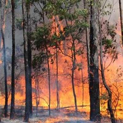 Is Your Property Bushfire Prepared?