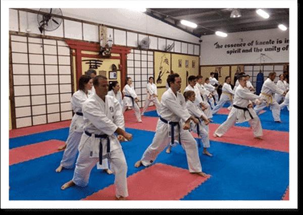 Toyakan Higashi Karate Club - Martial Arts Schools In Helensvale 4212