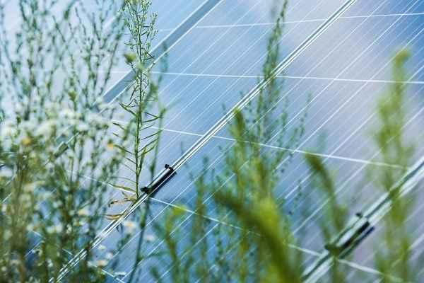 Accord Electrical & Solar - Solar Power &  Panels In Moffat Beach 4551