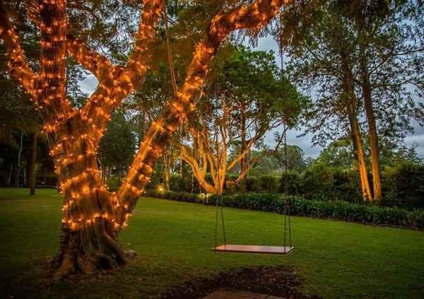 Decorative Lighting Company - Lighting In Miami 4220