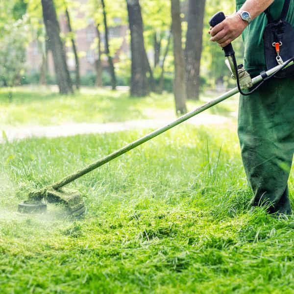 WA Gardening Guys - Gardeners In O'Connor 6163