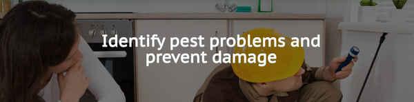 Savige Pest Control - Pest Control In Ipswich 4305