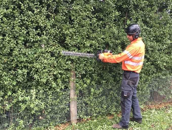 Photo for Arbator Tree Services- Tree Surgeons & Arborists in Warrnambool 3280 , Victoria