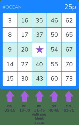 Bingo Ocean ticket