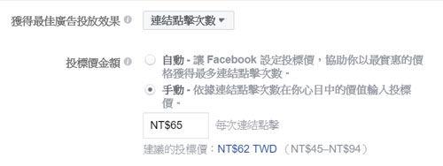 FB廣告出價