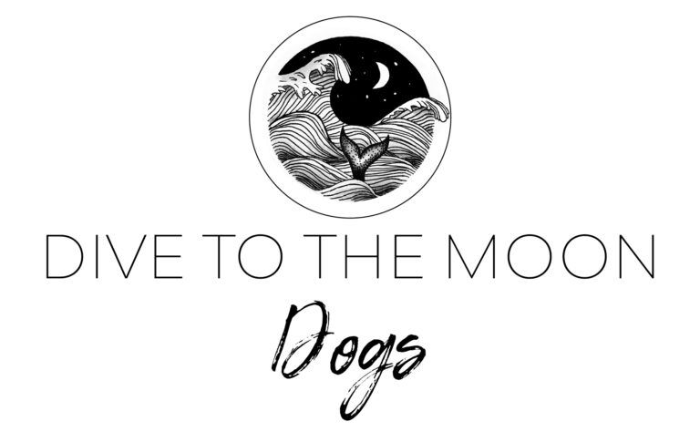 Dive to the moon dogs Miriam Doebner jewelry design Hundeschmuck Anti Zecken Hundehalsband