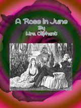 A ROSE IN JUNE