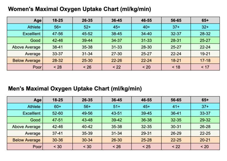 Maksimalna potrošnja kisika