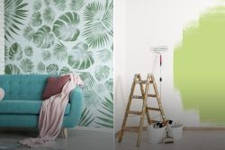 Wallpaper vs Paint