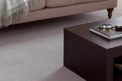 The Top 8 Carpet Trends to Expect in 2020