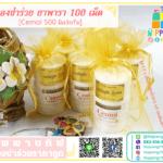 ยาพารา ของชําร่วย 100 เม็ด ราคาถูก