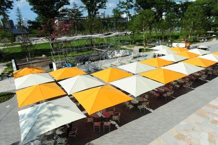 Viele weiße und gelbe Sonnenschirme