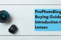 Vistek Buying Guides Lens Introduction Cover