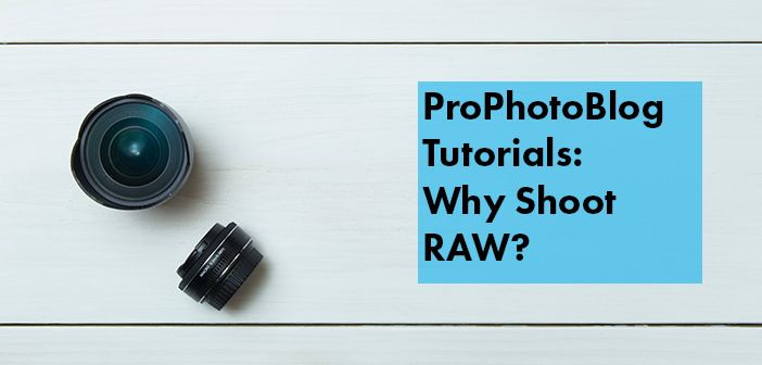 Vistek Tutorials - Why Shoot RAW Cover