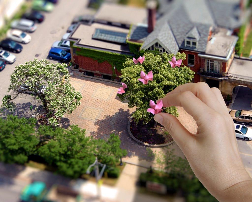 Origami Touch to Mini-Bonsai Garden