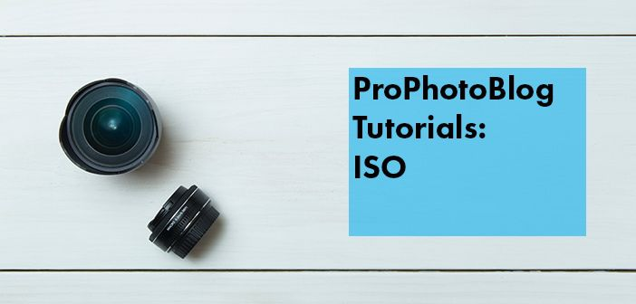 Vistek Tutorials - ISO Cover