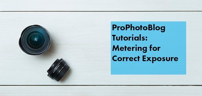 Vistek Tutorials - Metering for Correct Exposure Cover
