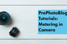 Vistek Tutorials - Metering in Camera Cover