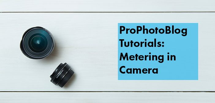 Vistek Tutorials - Metering in Camera Cover