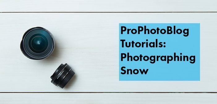 Vistek Tutorials - Photographing Snow Cover