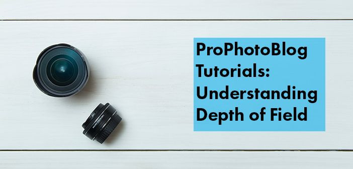 Vistek Tutorials - Understanding Depth of Field Cover