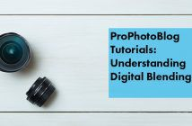 Vistek Tutorials - Understanding Digital Blending Cover