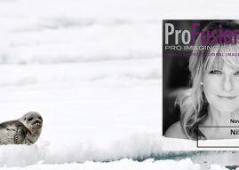 Michelle Valberg – ProFusion Expo 2019 Main Stage Presenter