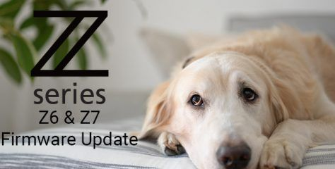 Nikon Z6 & Z7 Firmware Update Adds Animal Face/Eye Detection