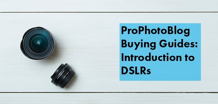 Vistek Buying Guides Introduction to DSLRs Cover