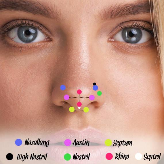 Nasen Piercingarten als Erklärung anhand einer Piercinglegende auf einem weiblichem Gesicht.