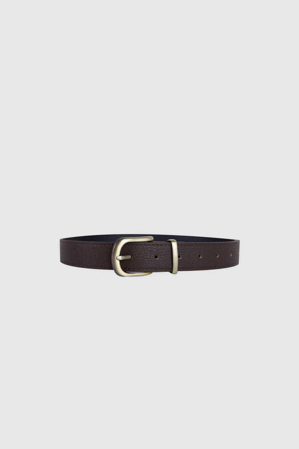 Belt J017 Brown 2