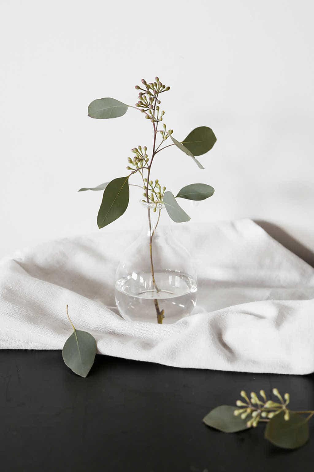 Bottle Vase 3381 Clear 1