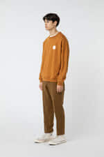 Sweatshirt 2949 Camel 13
