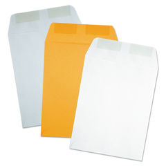 Quality Park™ Catalog Envelope Thumbnail