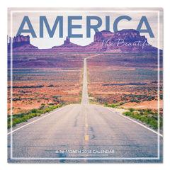 AT-A-GLANCE® Landmark® America the Beautiful Wall Calendar Thumbnail