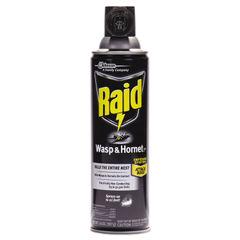 Raid® Wasp & Hornet Killer Thumbnail