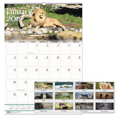 House of Doolittle™ Earthscapes™ 100% Recycled Wildlife Monthly Wall Calendar Thumbnail