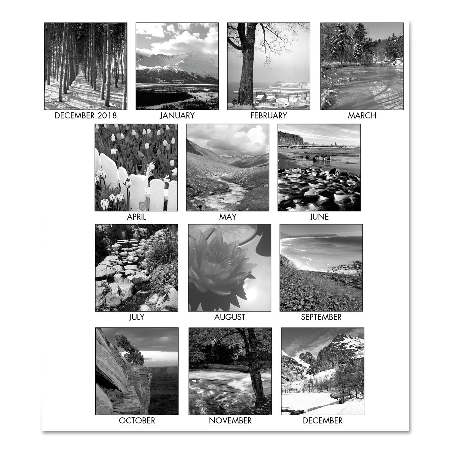 Recycled black and white photo monthly desk pad calendar by house of doolittle hod122 ontimesupplies com