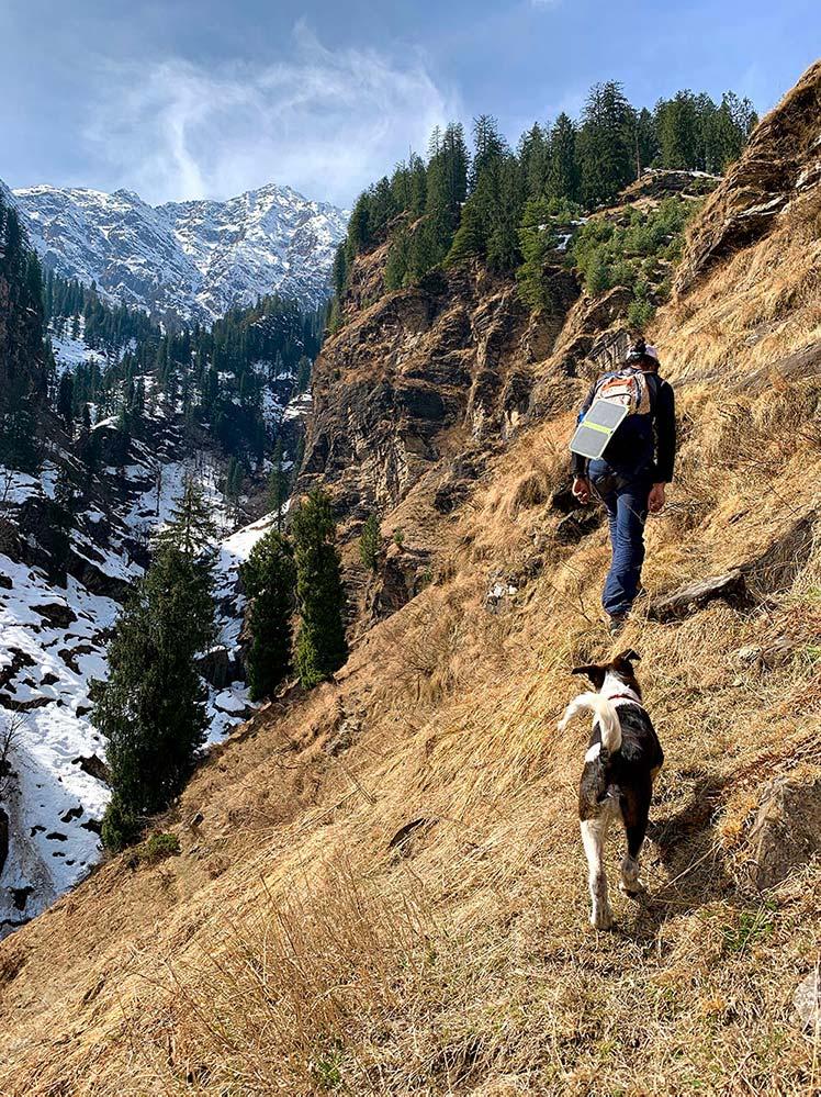 Bears Ridge Day Hike
