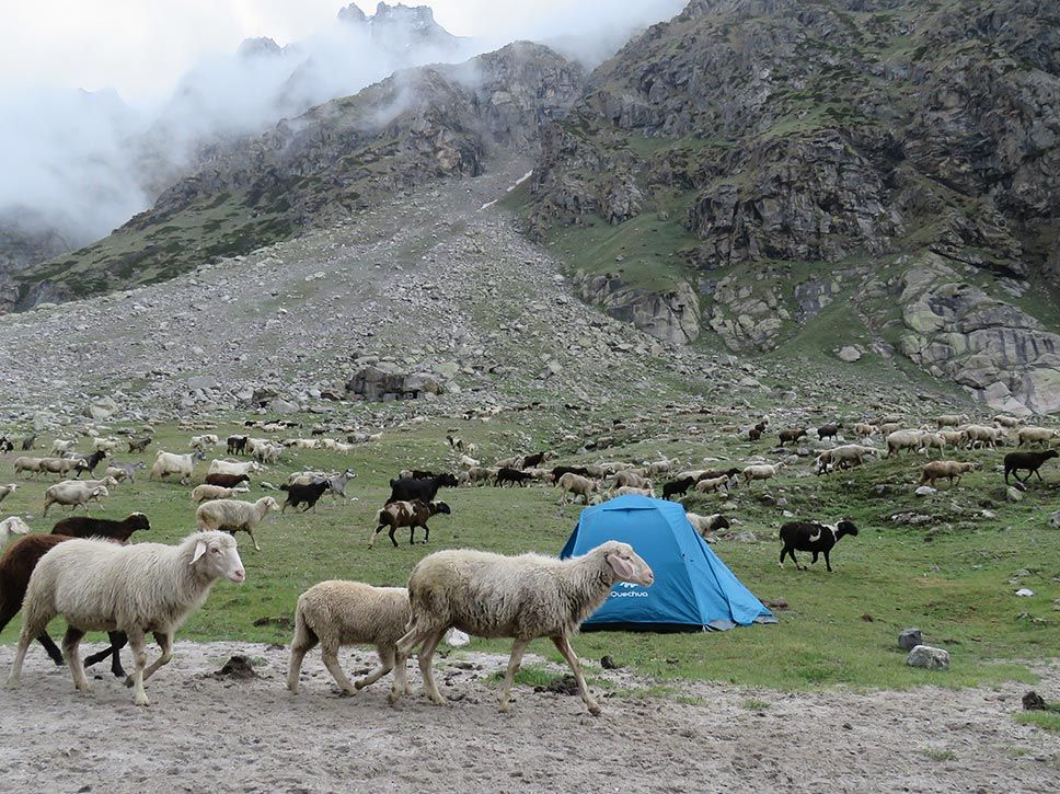 Deo Tibba Base Camp