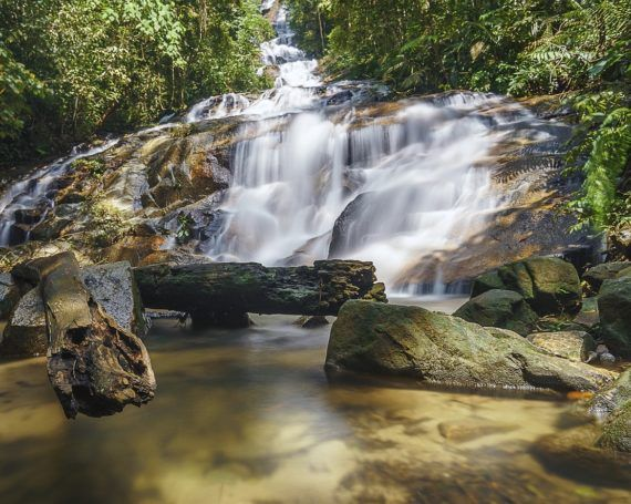 The 5 Most Spectacular Hiking Trails in Selangor 10